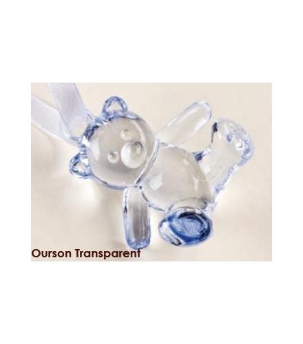 Ourson Transparent