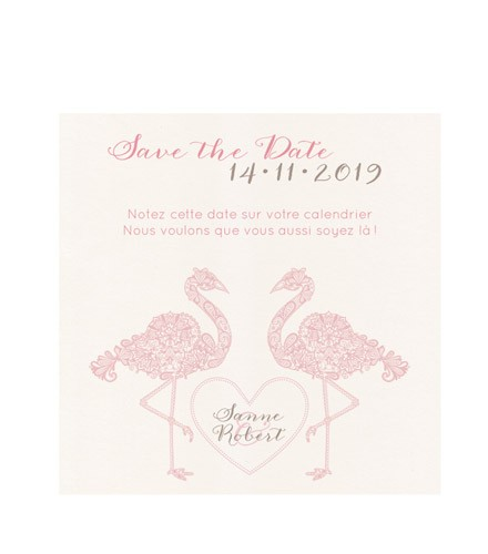 Save the date avec flamants roses
