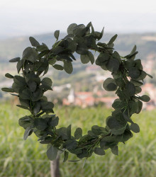 Couronne d'eucalyptus artificielle