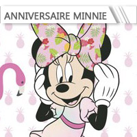 Déco Anniversaire Minnie