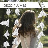 Décoration Plumes