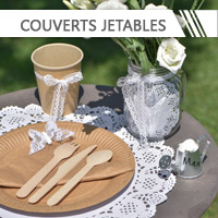 couverts jetables